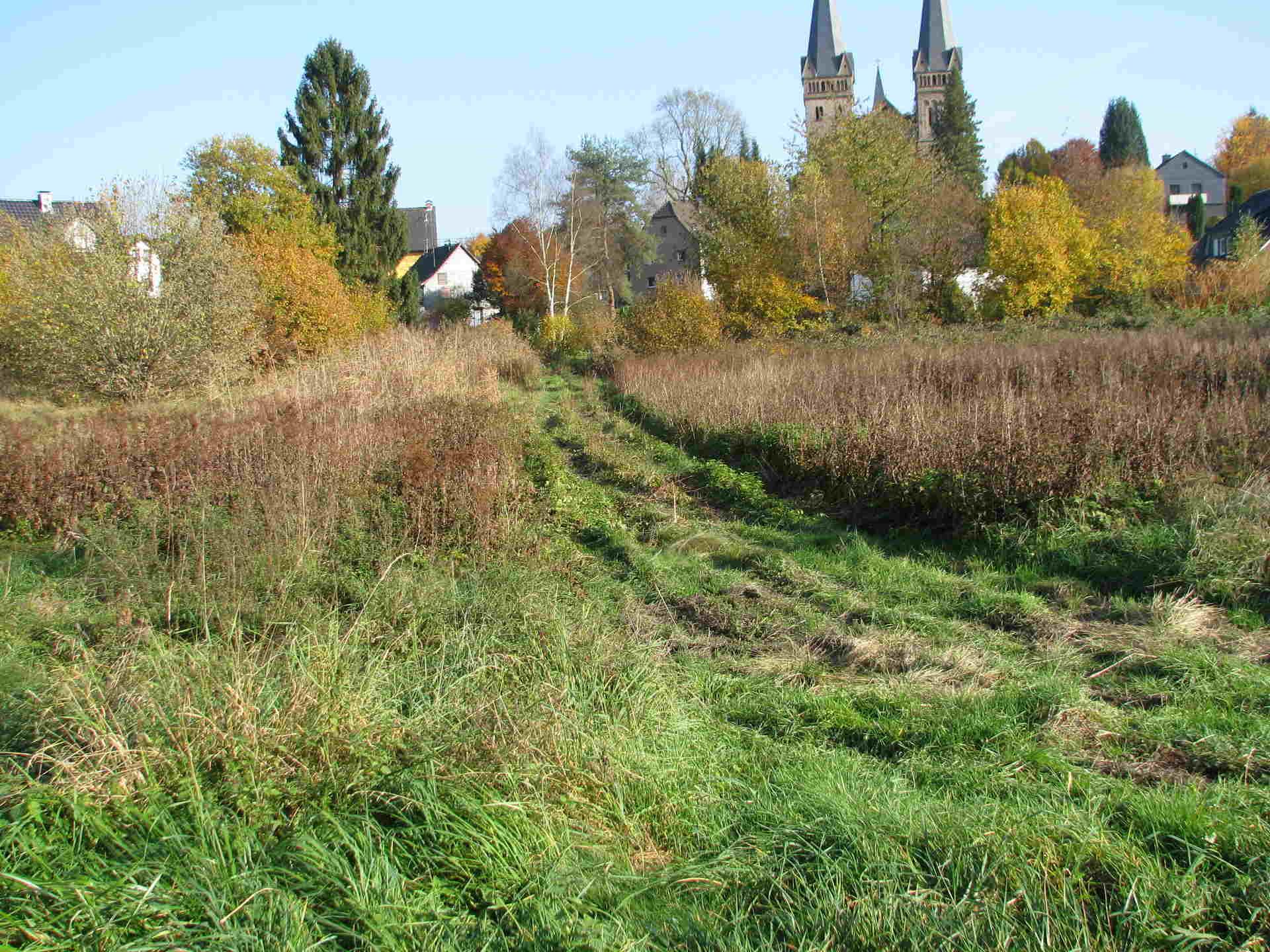 Sumpfland wird immer teurer